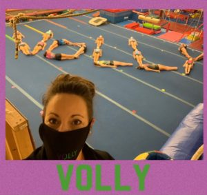 Volly Team